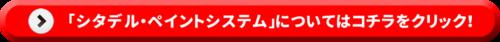 「シタデル・ペイントシステム」についてはコチラをクリック!